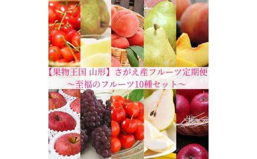 贅沢10回【果物王国 山形】さがえ産フルーツ定期便 ~至福のフルーツ10種セット~ <糖度保証付き入り> 先行予約 2021年産 100-B06