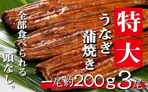 肉厚ふわっ『うなぎ蒲焼き無頭3尾』(国産ニンニクの芽付き)