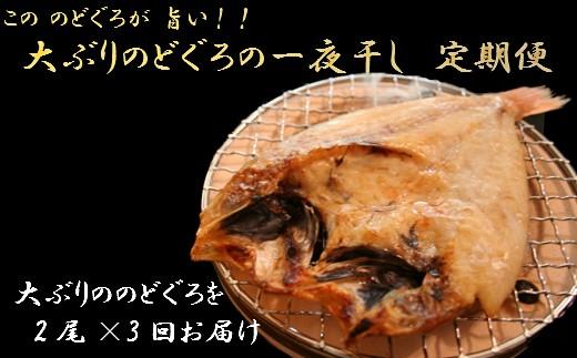 C025 島根県沖!大ぶり「のどぐろ一夜干」定期便(3回お届け)