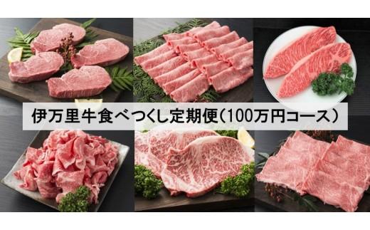 J254伊万里牛食べつくし定期便(寄附額100万円コース)