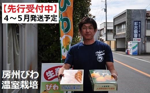 初夏の味覚「房州びわ(温室栽培)」!先行予約受付中!