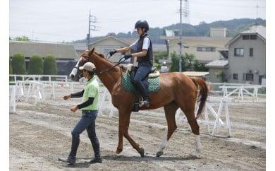 八王子乗馬倶楽部で乗馬の感動を!「乗馬体験」お試し2回コース