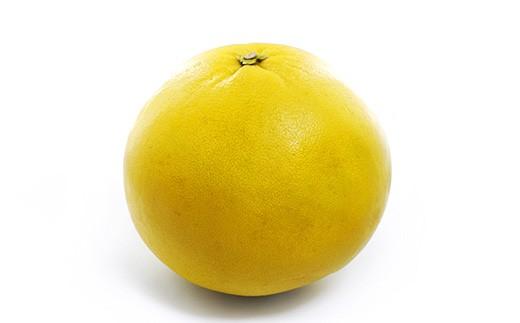 【事前受付】数量限定!八代市特産 晩白柚 Lサイズ  2玉