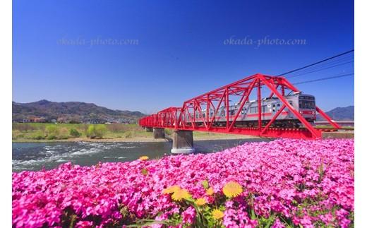 18 赤い鉄橋を走る別所線と千曲川(上田橋付近)4月撮影
