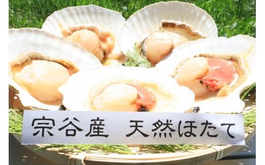 宗谷産 片貝ほたて10枚入(ウロ除去済み)【22039】