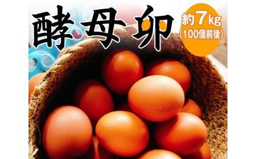 No.002 酵母卵 約7kg(100個前後) / たまご タマゴ 千葉県