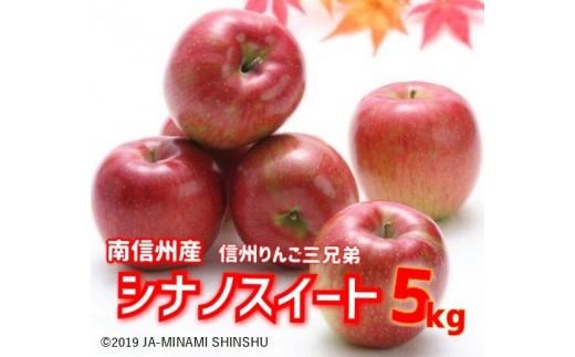 JA13-21A シナノスイート 約5kg(信州りんご三兄弟)/2021年10月上旬~10月中旬ごろ配送