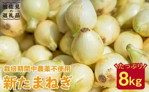 JAS認定の有機栽培新玉ねぎ8kg 長期保存可能【百笑会】 [DA04]