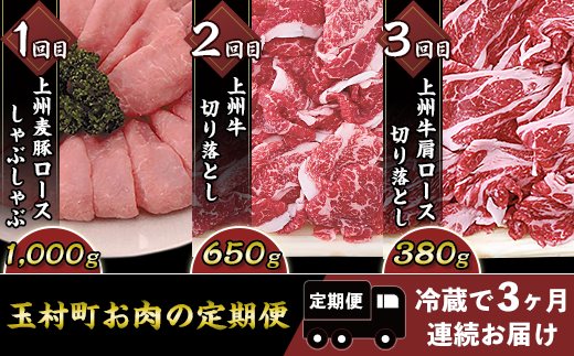 玉村町お肉の定期便【冷蔵で3ヶ月連続お届け】B-17