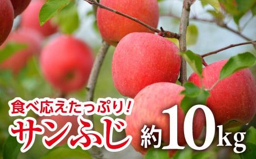 720 【令和3年11月中旬~発送予定】りんご[サンふじ] 約10kg(28玉~40玉)