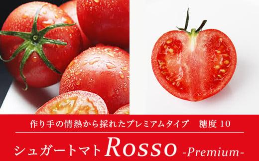 <先行受付>シュガートマト ロッソプレミアム10(糖度10度以上) 1kg 高糖度 フルーツトマト【1021438】