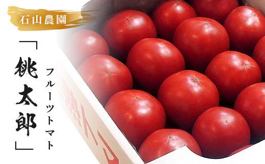 179  美味しんぼに登場したトマト「桃太郎」16~25玉 ランク:特選 糖度9度以上 令和2年12月中旬頃から受付順に順次発送します。石山農園(ギフト箱入)完熟フルーツトマト