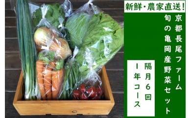 【6回定期便】京都長尾ファームの旬の野菜セット/隔月6回・1年コース《季節 京野菜 新鮮 産地直送》