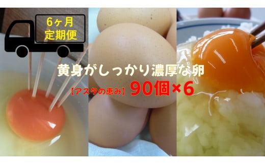 ◆6ヵ月定期便◆ 黄身がしっかり濃厚な卵【アスタの恵み】90個×6