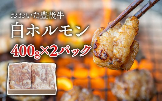 C-128 おおいた豊後牛 白ホルモン(400g×2P)