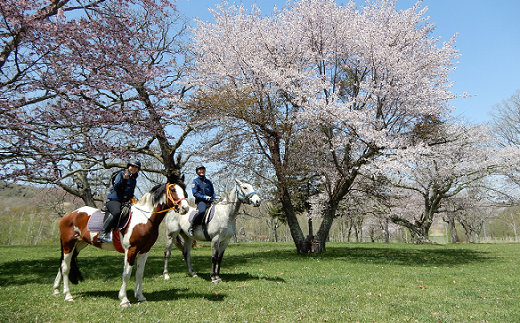 乗馬商品券90分×1枚(速歩コース)[07-093]