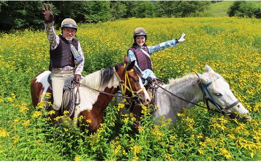 乗馬体験90分×1名駈歩(かけあし)コース[07-809]