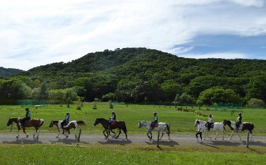 豊かな自然に囲まれているホテル「アエル」に併設された乗馬施設でご利用頂けます。※画像はイメージです