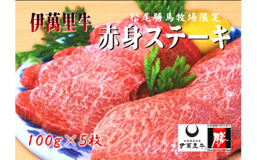 J311伊萬里牛赤身ステーキ5枚(約500g)ソース2種付き