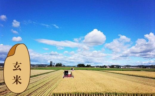 【玄米12ヶ月定期便】特別栽培「きなうす米」ふっくりんこ10kg×12回 02_P010