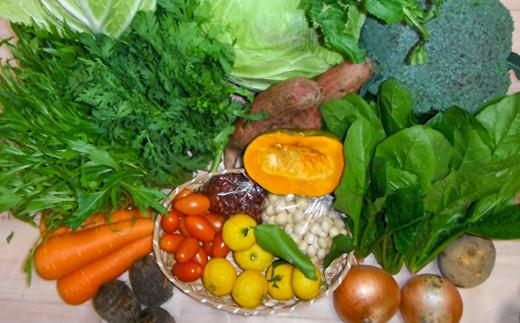 A-271 清流高津川の水で育てた旬の野菜(1回)