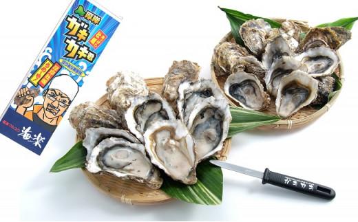[№5863-0302]北の海のミルク!厚岸産牡蠣3Lサイズが50個!