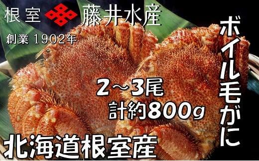 B-42049 【北海道根室産】ボイル毛がに2~3尾(計約800g)
