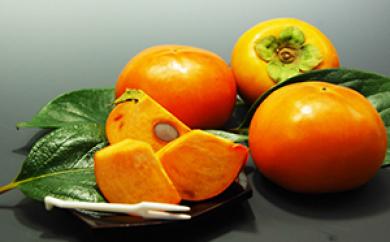 [№5656-1132]冷蔵柿(5kg)<筑前あさくら農協>