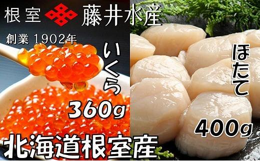 C-42040 【北海道根室産】いくら醤油漬120g×3P・お刺身帆立貝柱400g