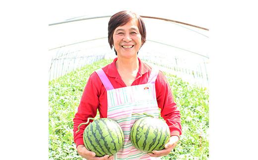 熊本県 合志産 小玉 すいか (品種:ひとりじめ) 1玉 約3kg