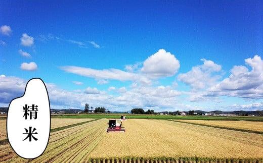 【精米12ヶ月定期便】特別栽培「きなうす米」ふっくりんこ10kg×12回 02_P008