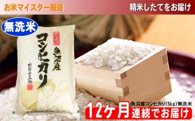 [№5762-0488]無洗米お米マイスター厳選魚沼コシヒカリ 5kg×12ヶ月連続お届け