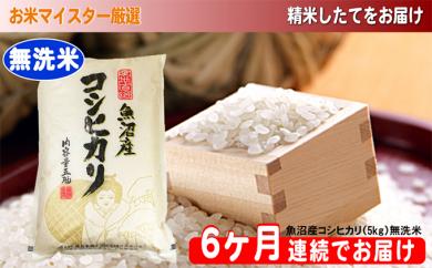 [№5762-0489]無洗米お米マイスター厳選魚沼コシヒカリ 5kg×6ヶ月連続お届け