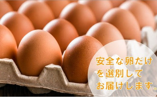 鶏舎から集めた卵から、割れている卵や、洗っても落ちない汚れがついている卵、規格外の卵をチェック・選別します。