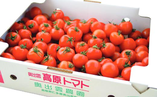 奥出雲高原トマト3kg(中玉サイズ) [A2-21]