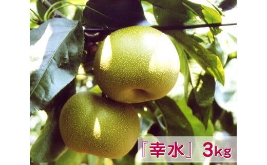 N-1 梨『幸水』 3kg