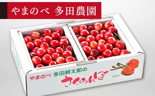 《先行予約》2021年 紅さやかバラ詰1kg(500g×2)「やまのべ 多田農園」 F20A-037