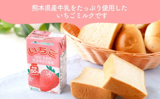 いちごミルク 24本 250ml×24本 1ケース - 熊本県益城町 | ふるさと納税 ...
