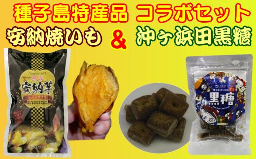 種子島特産品コラボ 熟成安納焼いも&黒糖一口セット 300pt NFN241