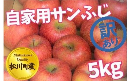 A20-112 松川町産!【訳あり】越年自家用サンふじ_5kg