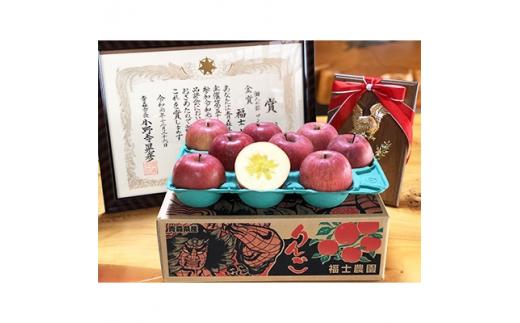 りんご「サンふじ」約3kg(家庭用・糖度14度以上保証)_A1-808【1106865】