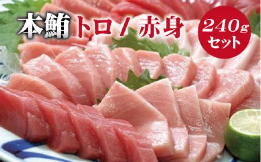 【串本町×北山村】本マグロ(養殖)トロ&赤身セット 240g