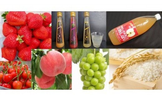 No.0224 先行予約【ふるさと定期便】いちご・フルビネ・りんごジュース・さくらんぼ・もも・シャインマスカット・米