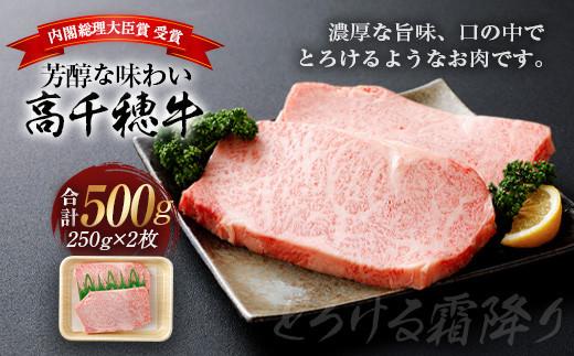 A-1 高千穂牛 サーロイン ステーキ 250g×2枚 500g