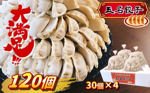 CA3 『玉名餃子』どどど~っんと 120個(30個×4袋)