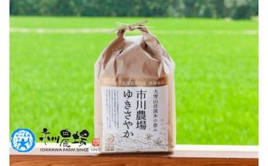 【新米先行予約】市川農場開発「ゆきさやか」(5㎏×3回便)~10月よりお届け~
