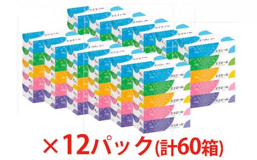 [№5665-0673]エリエールティシュー180組5箱×12パック 計60箱