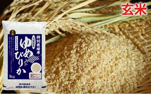 [№5665-0699]玄米 北海道赤平産ゆめぴりか特別栽培米5kg