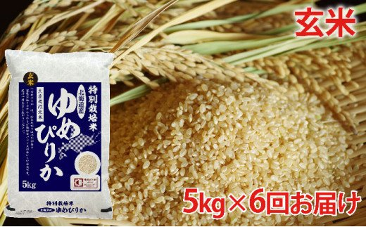 [№5665-0701]玄米 北海道赤平産ゆめぴりか特別栽培米5kg×6回お届け