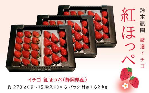 1059 イチゴ 紅ほっぺ(静岡県産)270g×6パック計1.6㎏ 令和3年3月25日から順次発送 鈴木農園